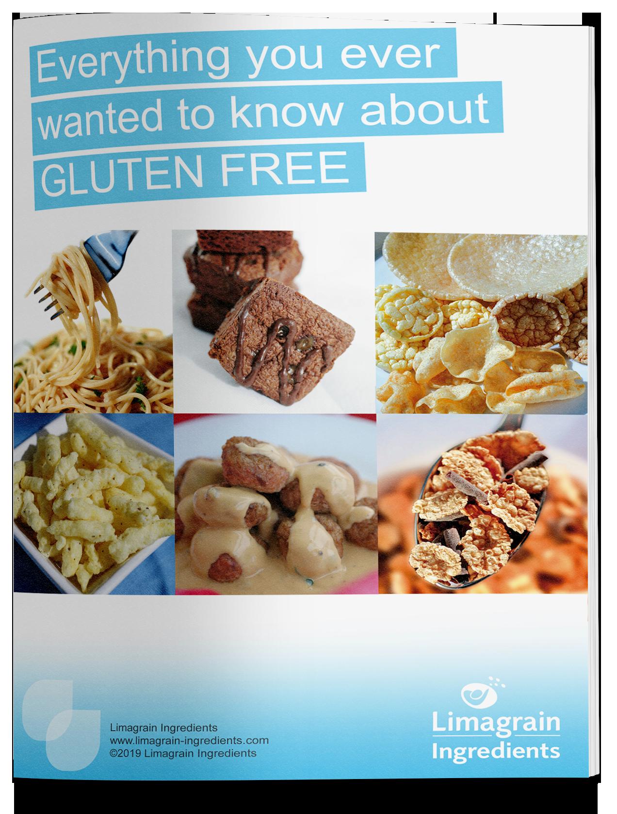 0202_ebook_gluten_free_mockup_EN_small