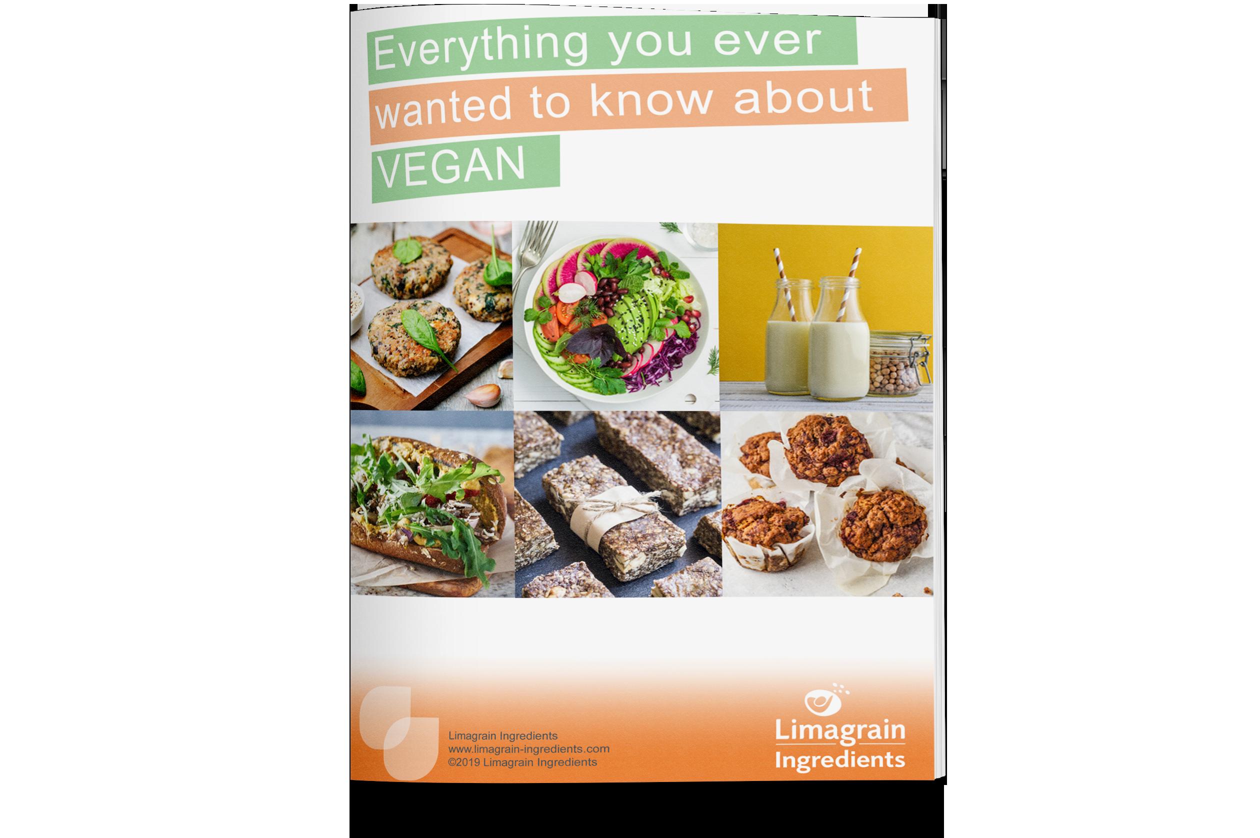 0202_ebook_vegan_mockup_EN_3
