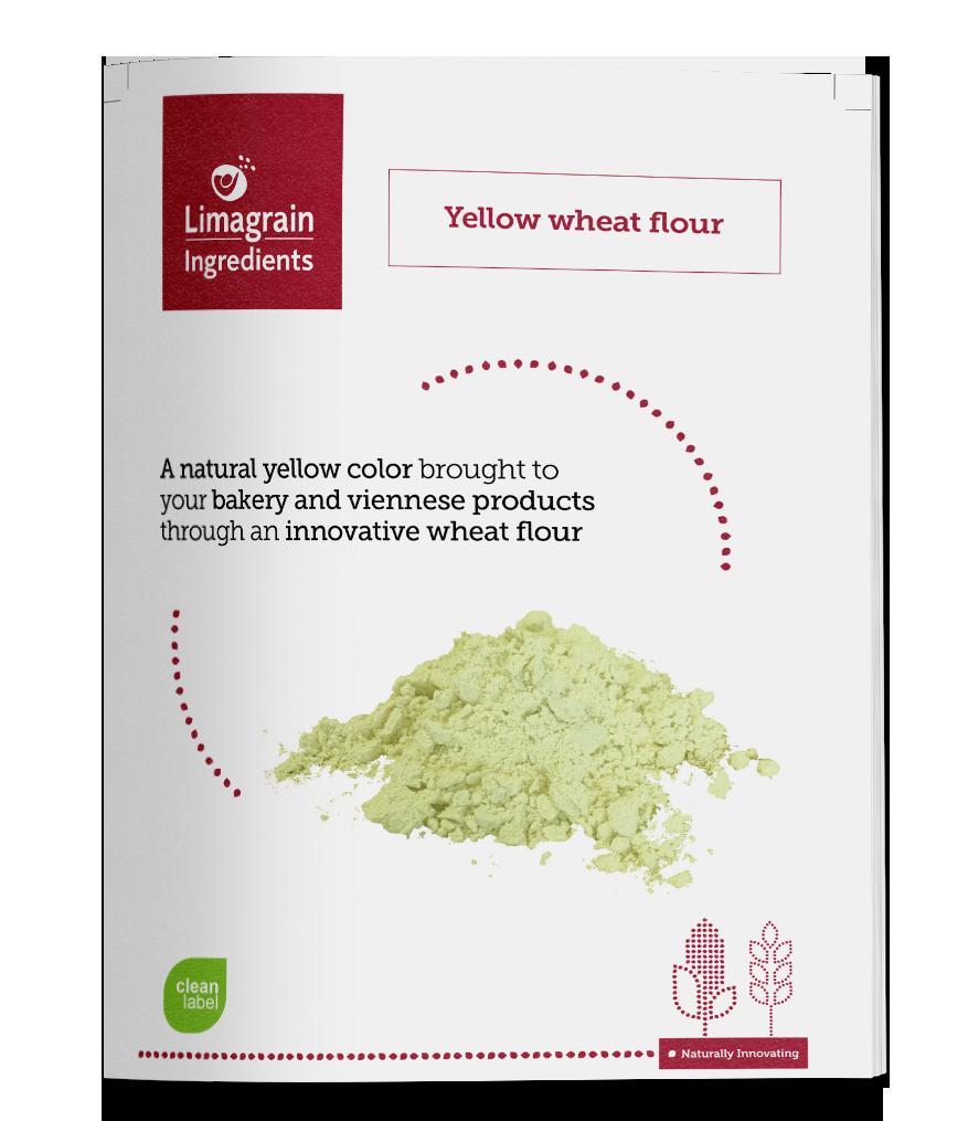 2904_leaflet_yellow_wheat_EN_mockup